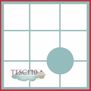 TESC110