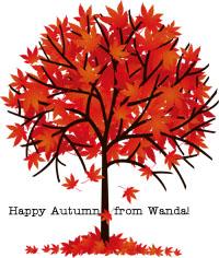 Wanda TE Blog Sept 2014 Apples 1
