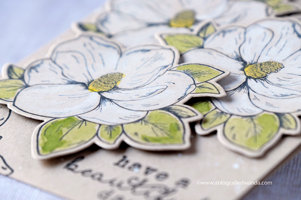 Hero Arts blog hop - new stamps. Flowers with watercolors