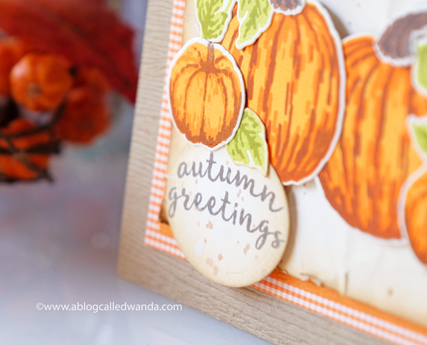 PUMPKIN STAMPS. FALL CARD, AUTUMN GREETINGS, LAYERING STAMPS. HERO ARTS