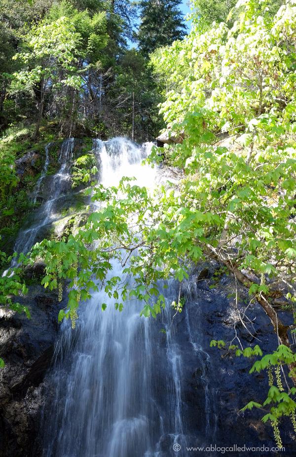 Bridalveil falls Highway 50