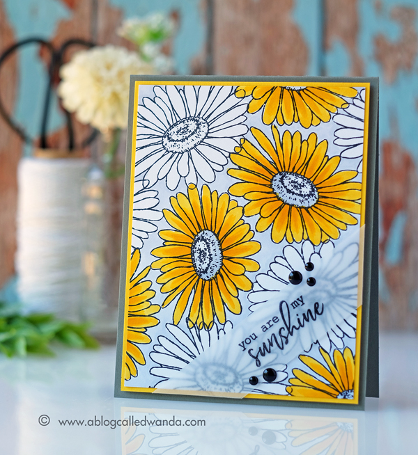 Hero Arts Monthly Card Kit. July 2017. Daisies and Copic Markers. Card by Wanda Guess