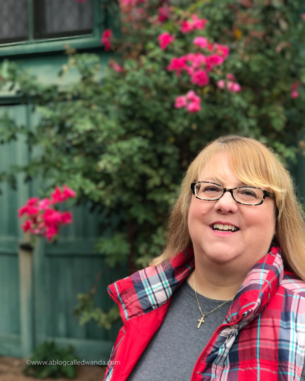 Wanda Guess - A Blog Called Wanda
