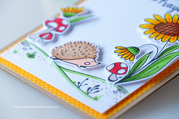 Waffle flower hedgehog