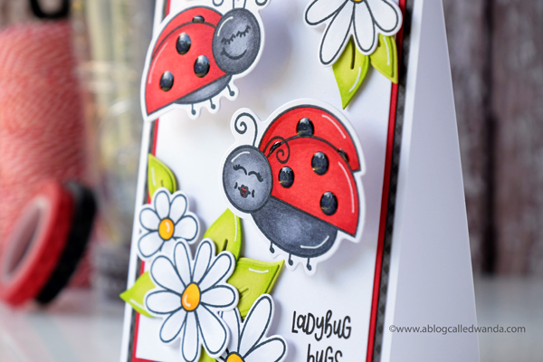 Honey Bee Stamps Ladybugs and Daisies