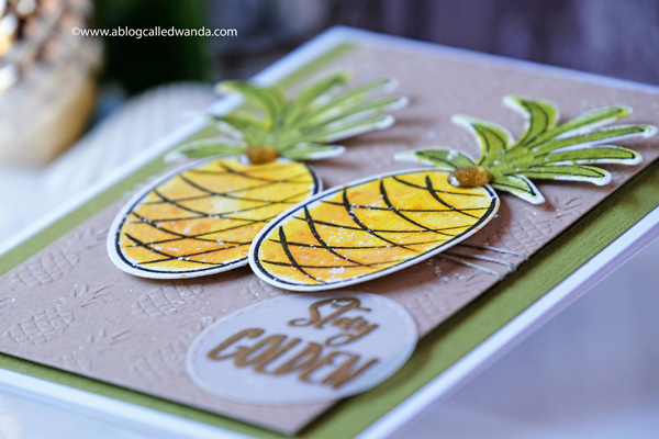 Pineapple card. Distress Inks. Ellen Hutson. Wanda Guess