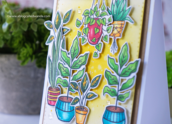 Hero Arts Potted Plants. Hang in there stamps and dies. Copic Markers. Distress Ink Blended background.