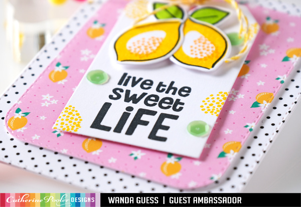 Catherine Pooler stamps and dies. Fresh and Fruity Paper pad. Forever 13 collection. Fruit stamps. Rosettes and fun card ideas. Wanda Guess