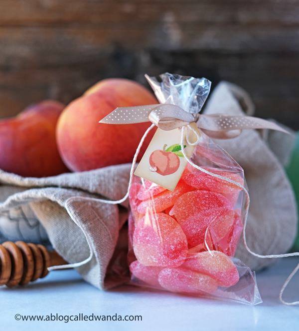 Treat bag ideas