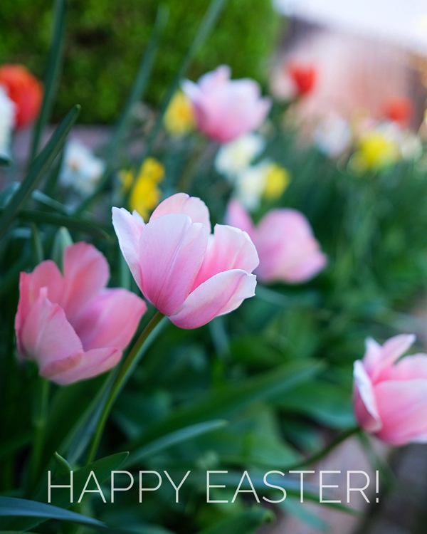 Happy Easter 2021 - A Blog Called Wanda