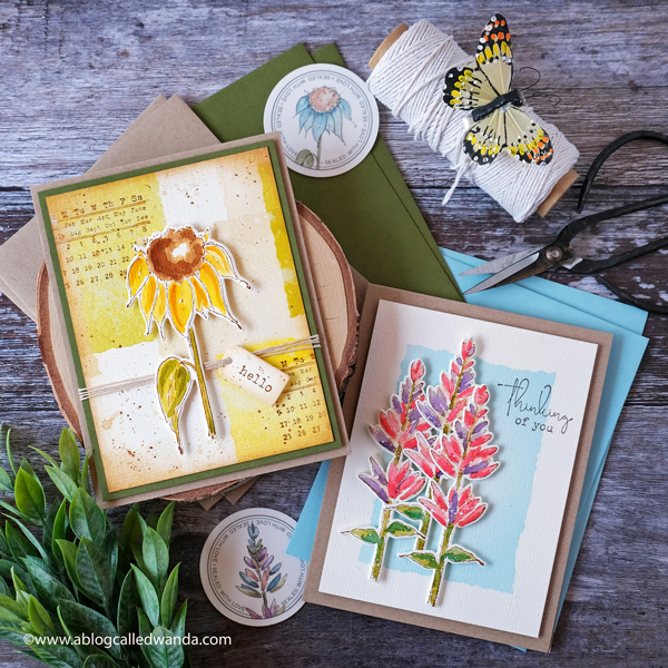 Taylored Expressions Card Kits, Taylored Expressions Field Notes Card Kit, Botanical Stamps, Water color with Distress inks, Handmade card ideas, sketchy florals, Card ideas, Wanda Guess