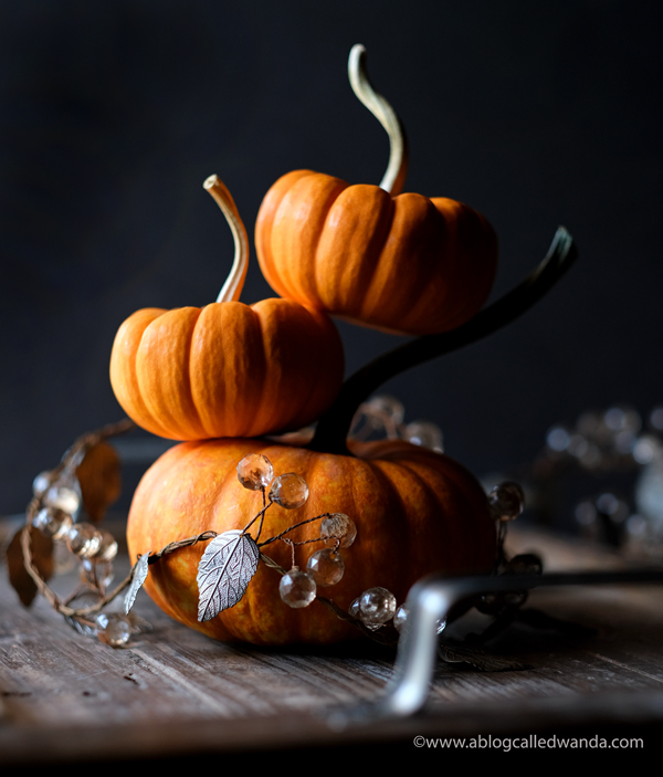 Fall photography. Pumpkins and home decor for Autumn. Wanda Guess. A Blog Called Wanda
